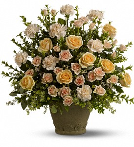 Teleflora's Rose Remembrance in Mount Morris MI, June's Floral Company & Fruit Bouquets