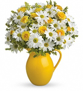 Teleflora's Sunny Day Pitcher of Daisies DX in Kent OH, Richards Flower Shop