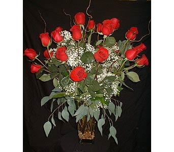 24 Red Roses in Dallas TX, Z's Florist