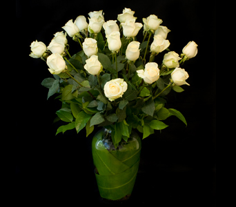 Two Dozen White Roses in Darien CT, Nielsen's Florist And Garden Shop