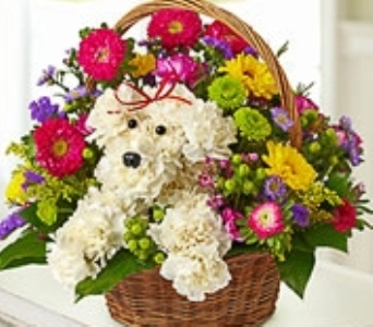 Its A DOGABLE brown basket in Port Charlotte FL, Punta Gorda Florist Inc.