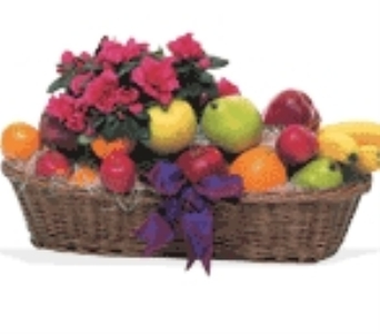 Plant and Fruit Basket in Fairfax VA, Greensleeves Florist