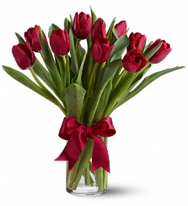 Radiantly Red Tulips in flower shops MD, Flowers on Base