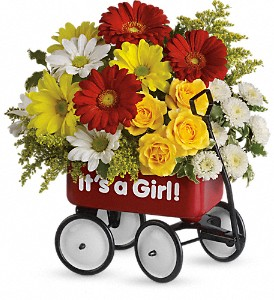 Baby's Wow Wagon by Teleflora - Girl in Bloomington IL, Forget Me Not Flowers