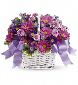 Daisy Daydreams in Tuscaloosa AL, Pat's Florist & Gourmet Baskets, Inc.