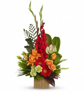 Teleflora's Beautiful Embrace Bouquet in Bonita Springs FL, Bonita Blooms Flower Shop, Inc.