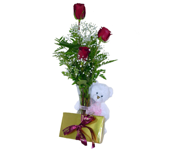 Teddy Love! in Baltimore MD, Raimondi's Flowers & Fruit Baskets