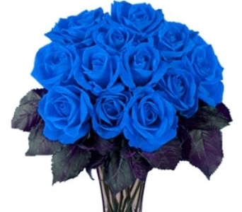 Blue Roses in New Rochelle NY, Enchanted Flower Boutique