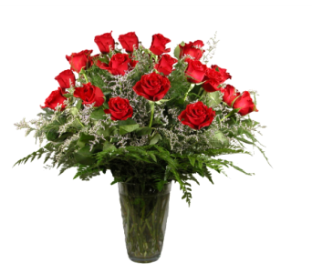 Two Dozen Roses in Stuart FL, Harbour Bay Florist