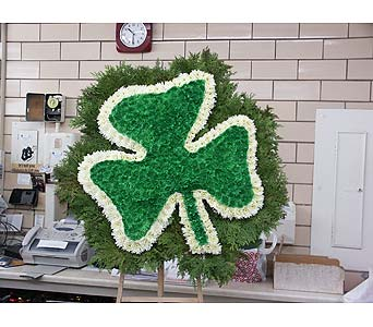 Shamrock in Chicago IL, Soukal Floral Co. & Greenhouses
