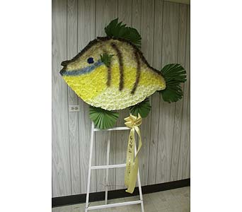 Bluegill Fish in Chicago IL, Soukal Floral Co. & Greenhouses