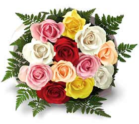 Mix Color Roses Bouquet in Cote St-Luc QC, Fleuriste Fleurissimo