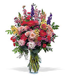 Flowers For 12 Months! in Indianapolis IN, George Thomas Florist
