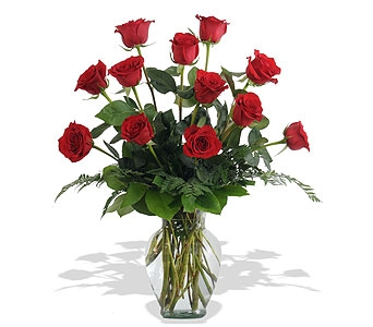 One Dozen Red Roses in St. Louis MO, Walter Knoll Florist