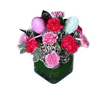 Easter Carnations in Southampton PA, Domenic Graziano Flowers