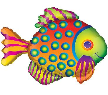 Giant Tropical Fish in Perrysburg & Toledo OH - Ann Arbor MI OH, Ken's Flower Shops