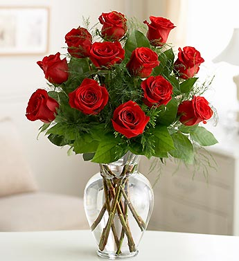 One Dozen Premium Long Stem Red Roses in Indianapolis IN, George Thomas Florist