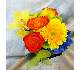 Young & Youthful in Santa Monica CA, Santa Monica Florist