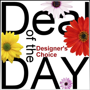 Daily Deal: Designer's Choice in Scranton PA, McCarthy Flower Shop<br>of Scranton