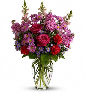 Dreaming of You in New Port Richey FL, Holiday Florist