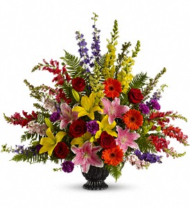 Walk in Rainbows by Teleflora in Lake Worth FL, Flower Jungle of Lake Worth
