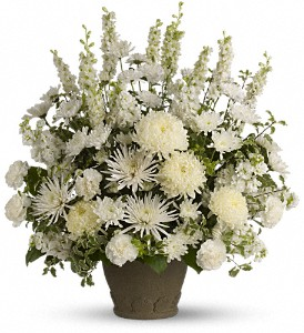 Teleflora's Pure and True in Orange CA, Main Street Florist