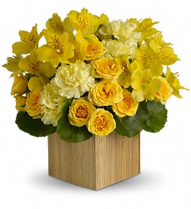 Teleflora's Sunshine Chic in Bonita Springs FL, Bonita Blooms Flower Shop, Inc.