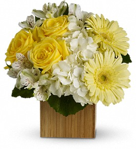 Teleflora's Pure Bliss in Colleyville TX, Colleyville Florist