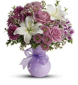 Teleflora's Precious in Purple in Austintown OH, Crystal Vase Florist