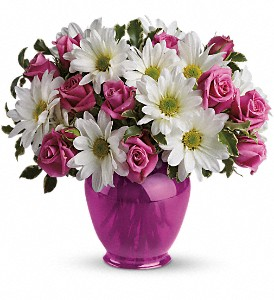 Teleflora's Pink Daisy Delight in East Syracuse NY, Whistlestop Florist Inc