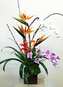 Naples on the Gulf in Naples FL, Gene's 5th Ave Florist