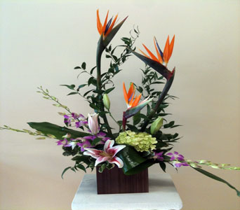 Birds in Bamboo in Naples FL, Gene's 5th Ave Florist