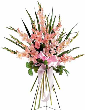 Sentimental Gladioli Spray in McLean VA, MyFlorist