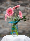 Electro Gerbera in Winchester VA, Flowers By Snellings
