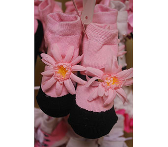 Daisy Slippers in Sanford FL, Sanford Flower Shop, Inc.