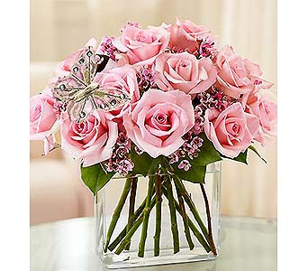 Modern Roses - One Dozen Pink in Bradenton FL, Ms. Scarlett's Flowers & Gifts