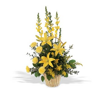 Sunshine''s Warmth-FREE DELIVERY! in Cohasset MA, ExoticFlowers.biz