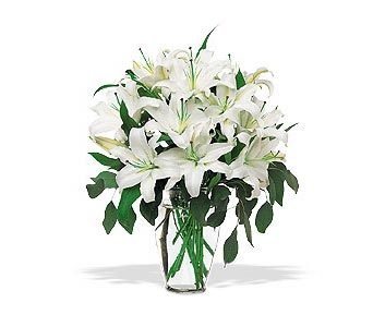 Purity Defined in Cohasset MA, ExoticFlowers.biz