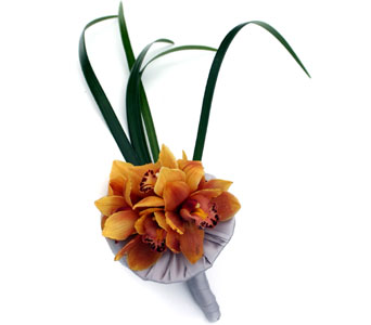 Golden Orchid Handtied in Norristown PA, Plaza Flowers