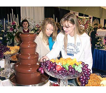 Chocolate Fountain Bridal Showers in Grand Island NE, Roses For You!