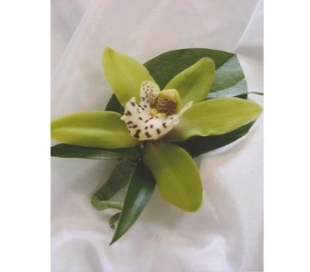 Miniature Green Cymbidium Boutonniere in West Bloomfield MI, Happiness is...Flowers & Gifts