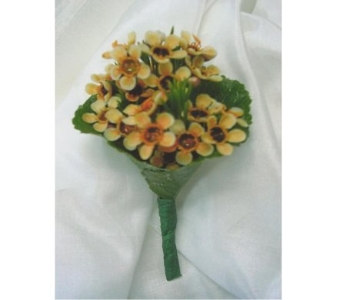 Peahc Wax Flower Boutonniere in West Bloomfield MI, Happiness is...Flowers & Gifts