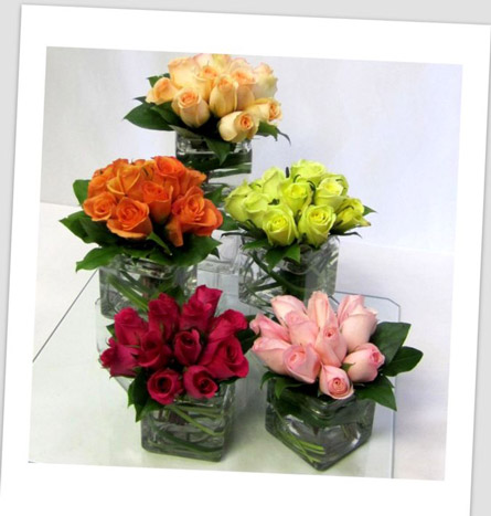 Posies of Roses in Scranton PA, McCarthy Flower Shop<br>of Scranton