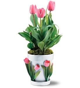 Porcelain Tulips Cachepot