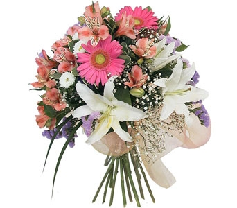 Lilies, Gerberas, and More in Norristown PA, Plaza Flowers