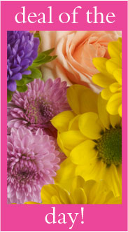 Deal of The Day in Port St Lucie FL, Flowers By Susan