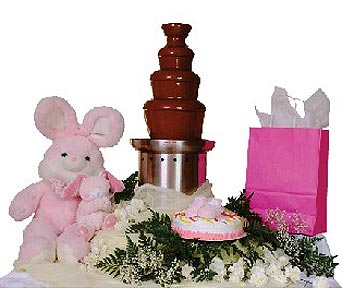 Chocolate Fountain Baby Showers In Grand Island Ne Roses For You