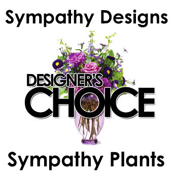 Designer's Choice Sympathy Plant in Chicagoland IL, Amling's Flowerland