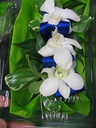 Elegent Dendrobium Corsage in Guelph ON, Patti's Flower Boutique