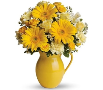 Sunny Day Pitcher of Cheer in Norristown PA, Plaza Flowers